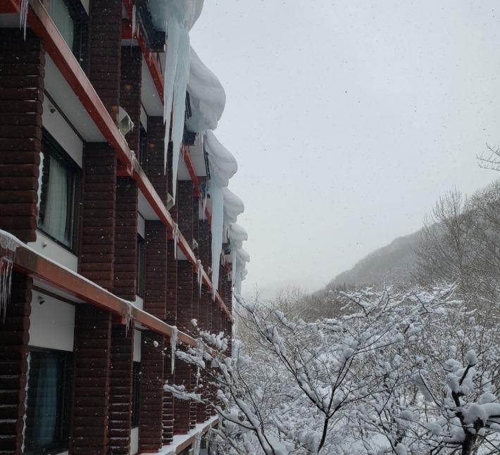 星野リゾート奥入瀬渓流ホテル 客室からの雪景色