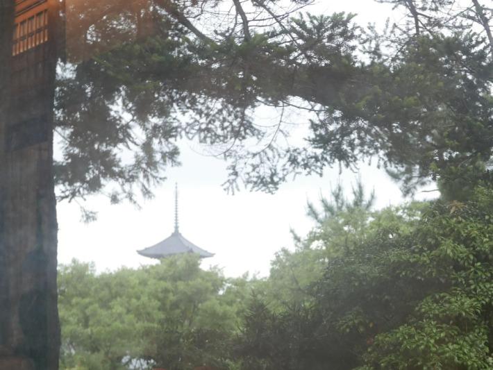 奈良ホテル メインダイニング『三笠』からの景色